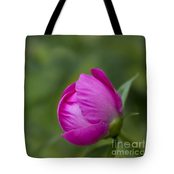Tote Bag featuring the photograph Pink Globe by Andrea Silies