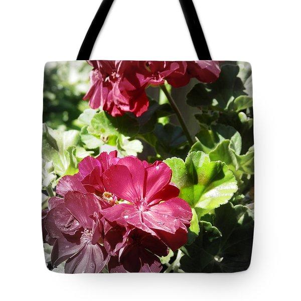 Pink Glory Tote Bag