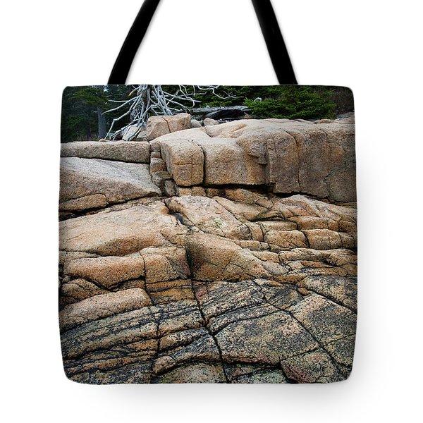 Pink Granite And Driftwood At Schoodic Peninsula In Maine  -4672 Tote Bag