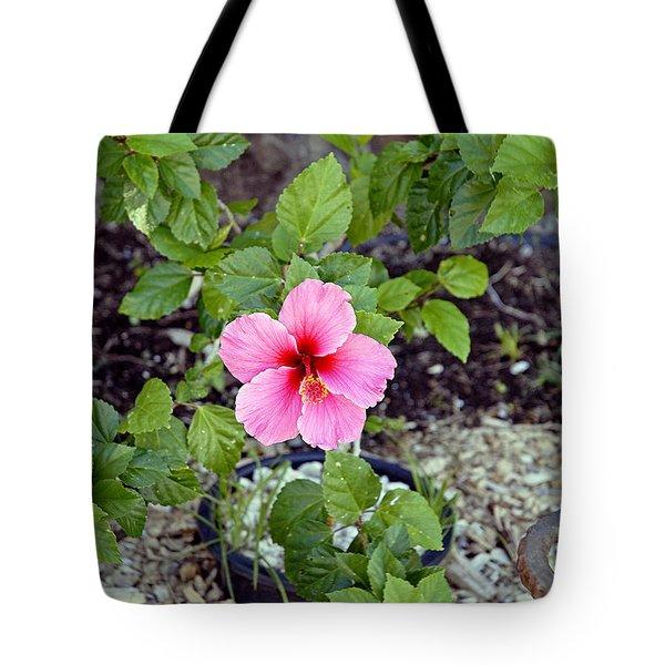 Pink Hibiscus And Wheel Tote Bag