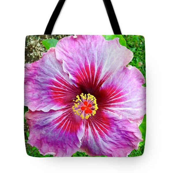 Pink Hibiscus Joyous Cosmology Tote Bag