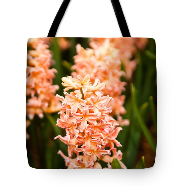 Tote Bag featuring the photograph Pink Hyacinth by Erin Kohlenberg