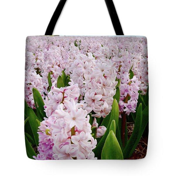 Pink Hyacinth  Tote Bag by Mihaela Pater