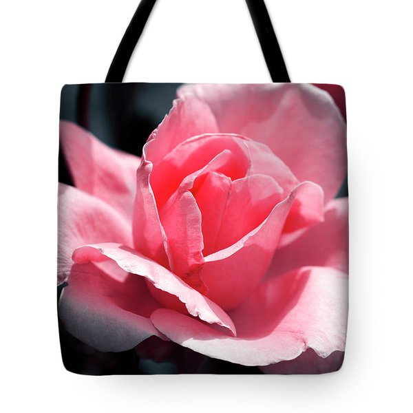 Pink In Light And Shadow Tote Bag by Rebecca Davis