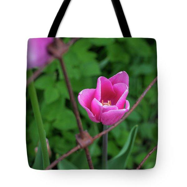 Pink In Stratford Tote Bag