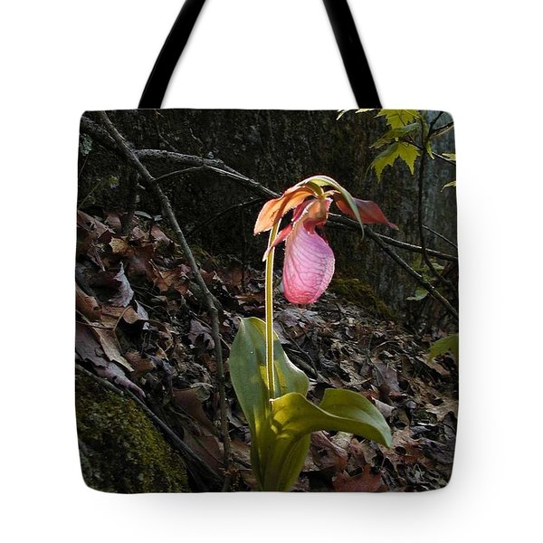 Tote Bag featuring the painting Pink Ladies Slipper by Martha Ayotte
