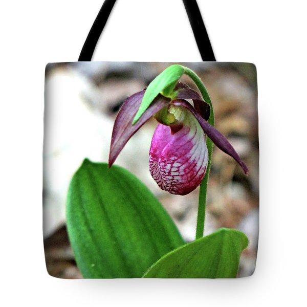 Pink Lady Slipper #1 Tote Bag by Marle Nopardi