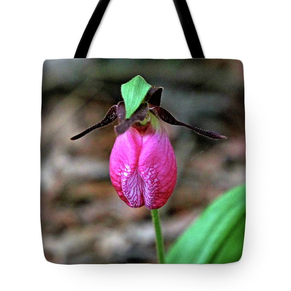 Pink Lady Slipper #2 Tote Bag by James F Towne