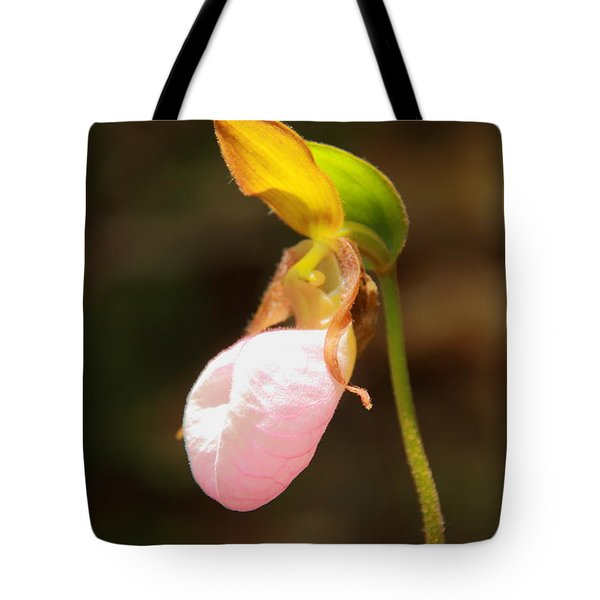Tote Bag featuring the photograph Pink Lady Slipper by Roupen  Baker