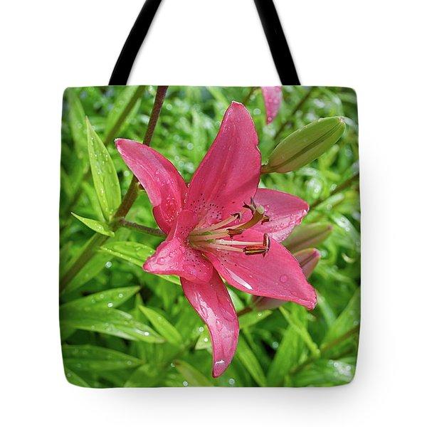 Pink Lily Flowers By Tamara Sushko  Tote Bag