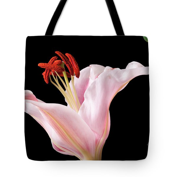 Tote Bag featuring the photograph Pink Oriental Lily With Bright Red Pollen by David Perry Lawrence