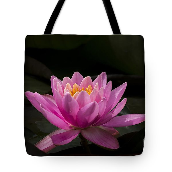 Pink Lotus Tote Bag by Andrea Silies