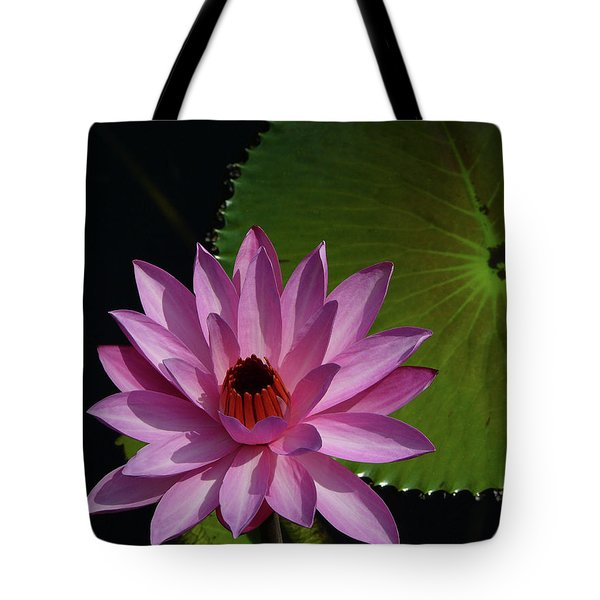 Pink Lotus Tote Bag by Evelyn Tambour