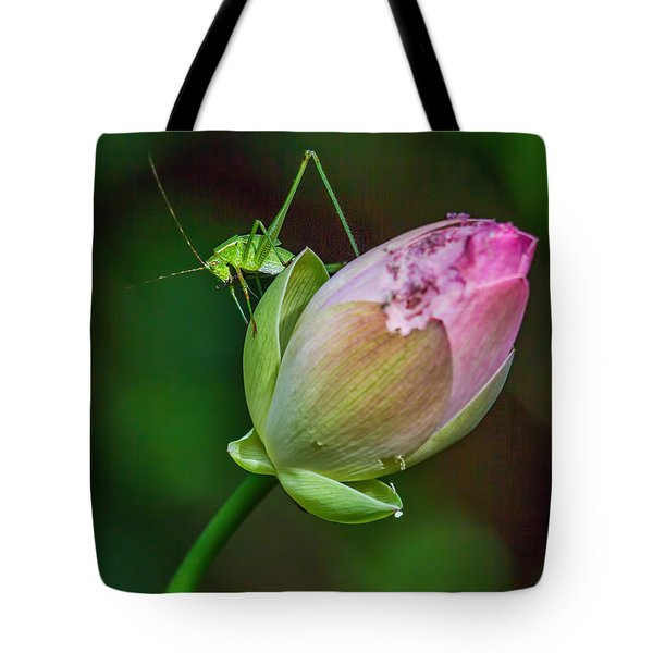 Pink  Lotus With Company Tote Bag by Susi Stroud