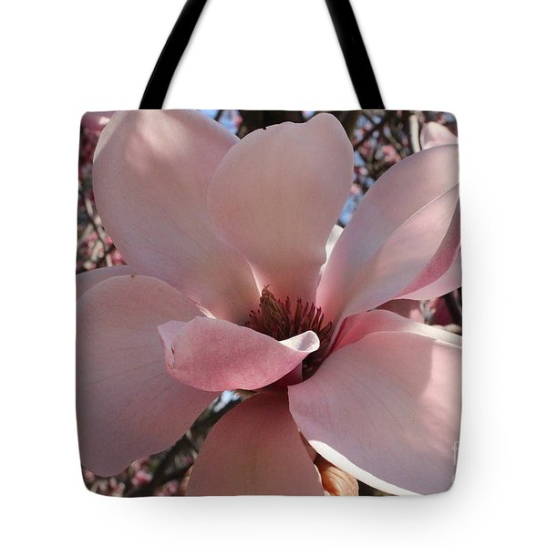 Pink Magnolia In Full Bloom Tote Bag by Dora Sofia Caputo Photographic Art and Design