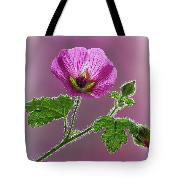 Pink Mallow Flower Tote Bag