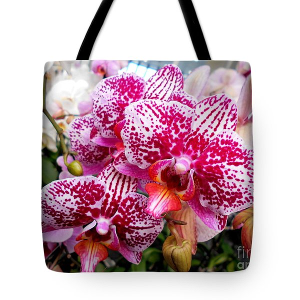 Pink Moth Orchids Tote Bag