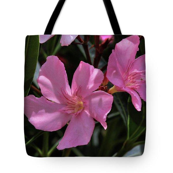 Pink Oleander Tote Bag by Richard Stephen