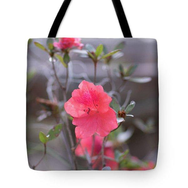 Pink Orange Flower Tote Bag