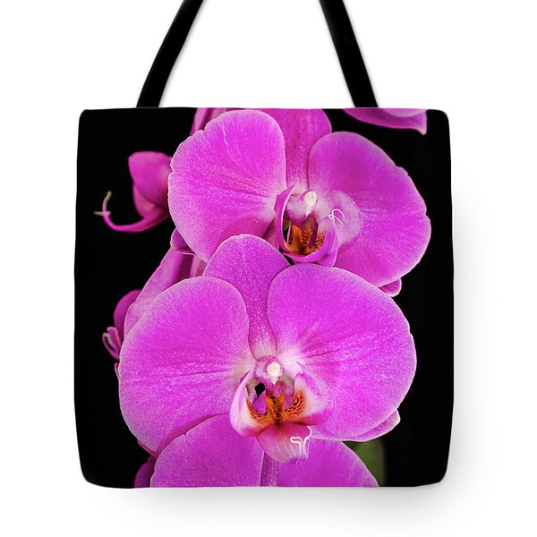 Pink Orchid Against A Black Background Tote Bag