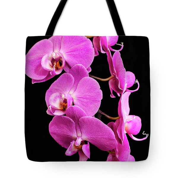 Pink Orchid With Black Background Tote Bag
