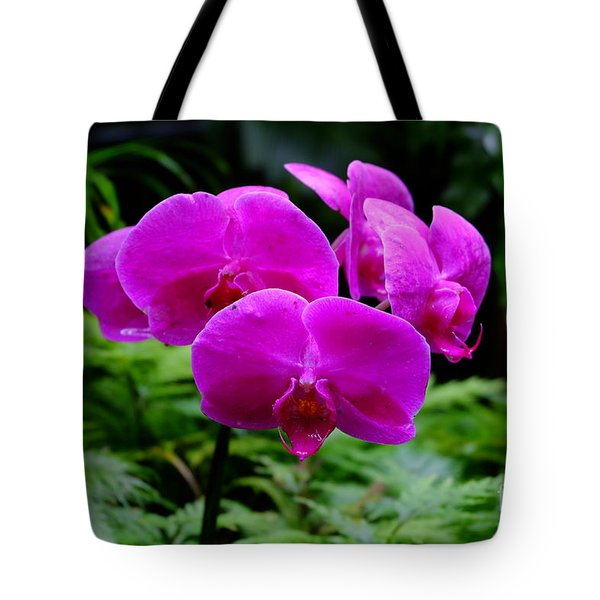 Pink Orchids Tote Bag by Mini Arora