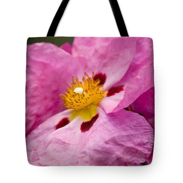 Pink Parchment Flower Tote Bag