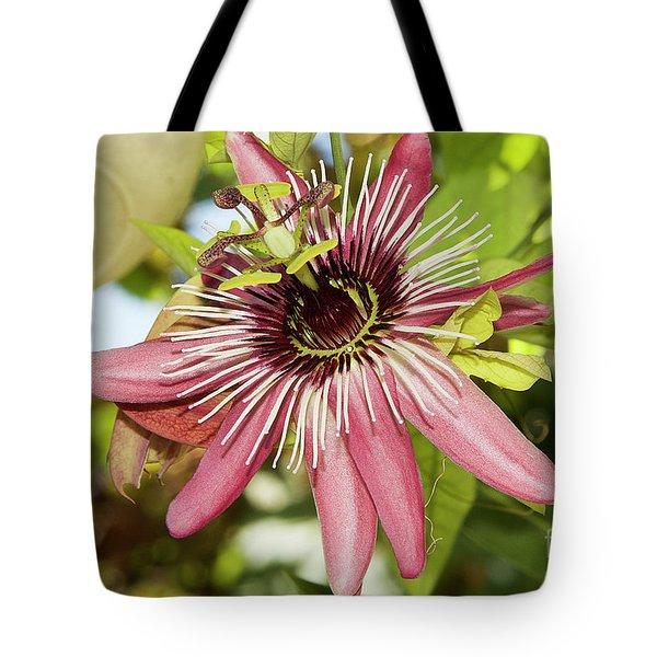 Pink Passiflora Tote Bag by Elvira Ladocki