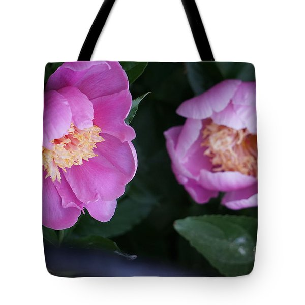 Tote Bag featuring the photograph Pink Peones by Rod Ismay