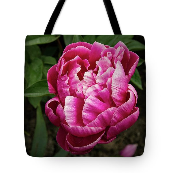 Tote Bag featuring the photograph Pink Peony by Jean Noren