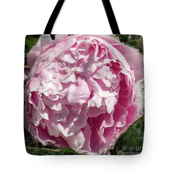 Pink Peony II Tote Bag