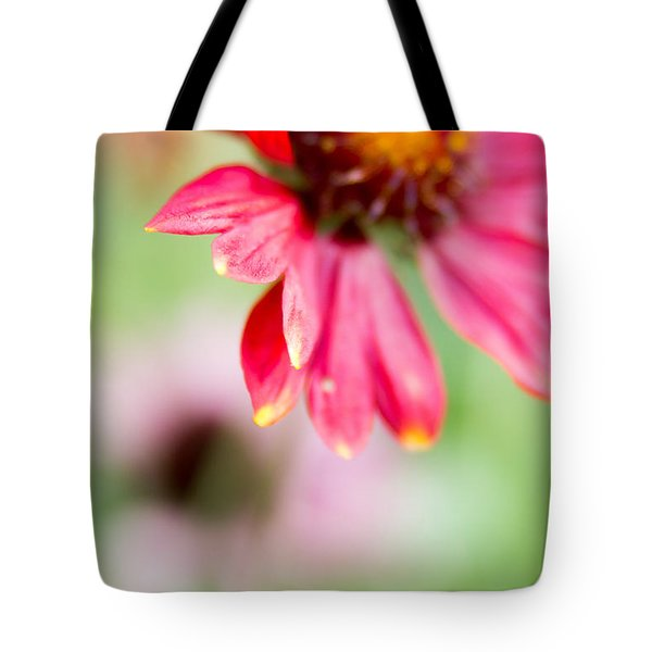 Tote Bag featuring the photograph Pink Petal by Erin Kohlenberg