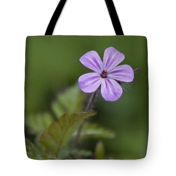 Pink Phlox Wildflower Tote Bag