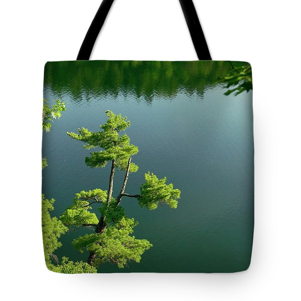 Pink Pine Tote Bag