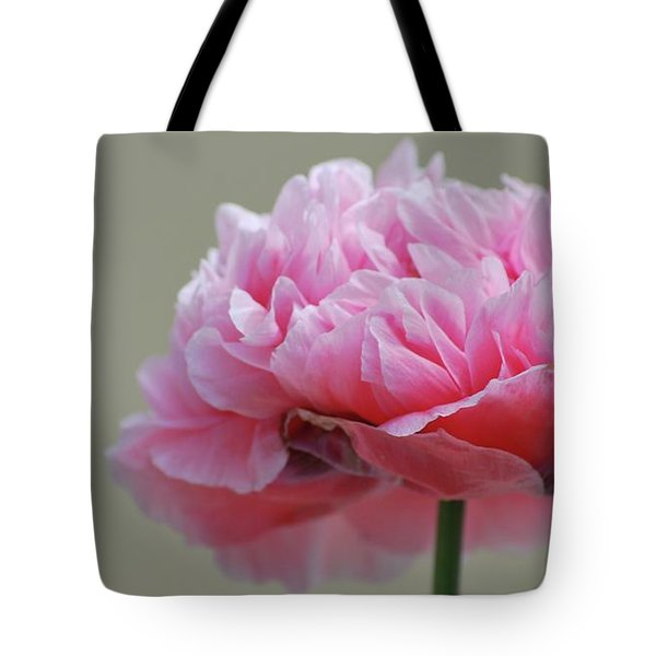 Tote Bag featuring the photograph Pink Poppy by Amee Cave