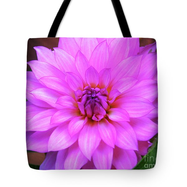 Tote Bag featuring the photograph Pink Purple Dahlia Flower by Kristen Fox