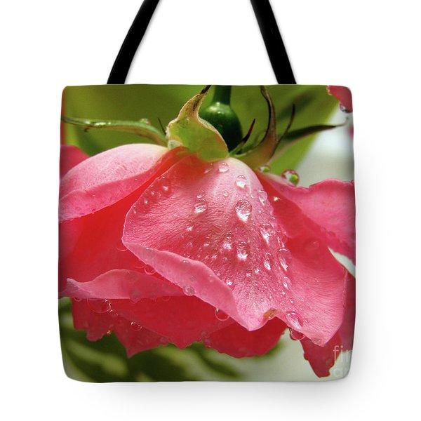 Pink Rose #3 Tote Bag