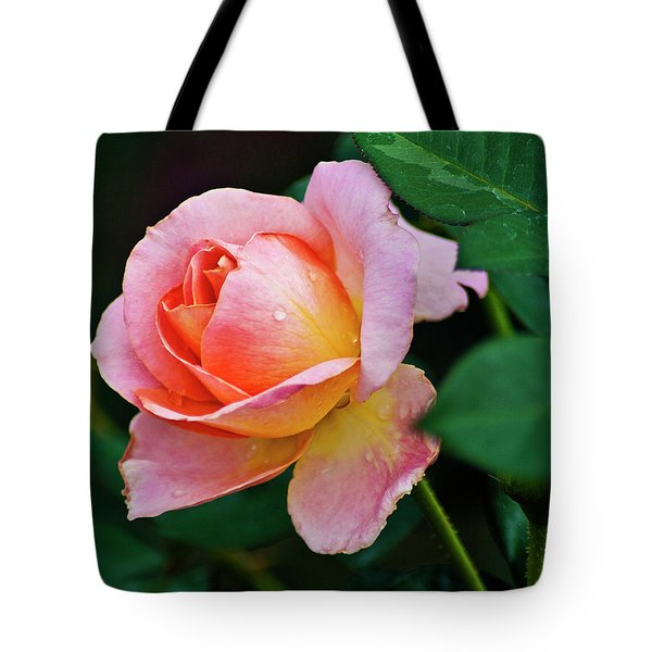 Tote Bag featuring the photograph Pink Rose by Bill Barber