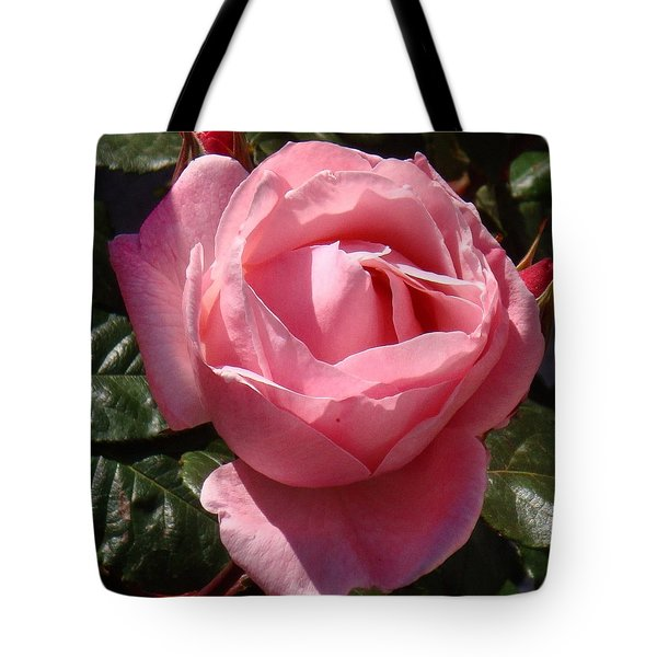 Pink Rose In Spain Tote Bag