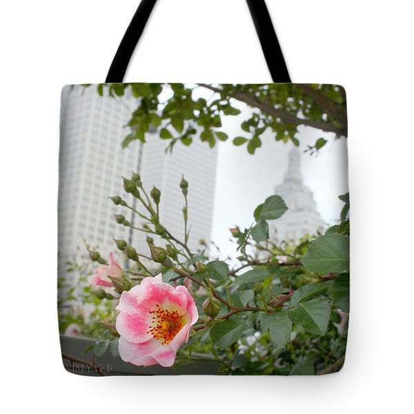 Pink Rose Of Tulsa Tote Bag