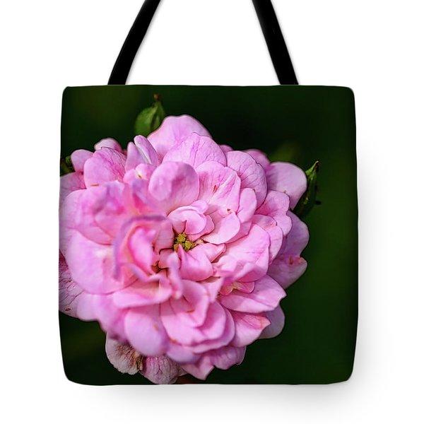 Pink Rose Petals Tote Bag