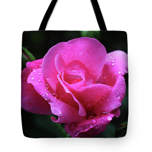 Pink Rose With Raindrops Tote Bag