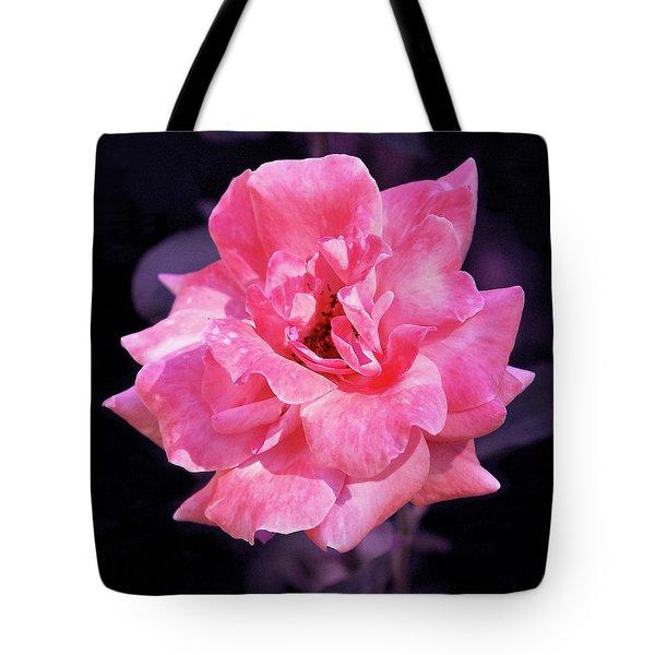 Pink Rose With Violet Tote Bag