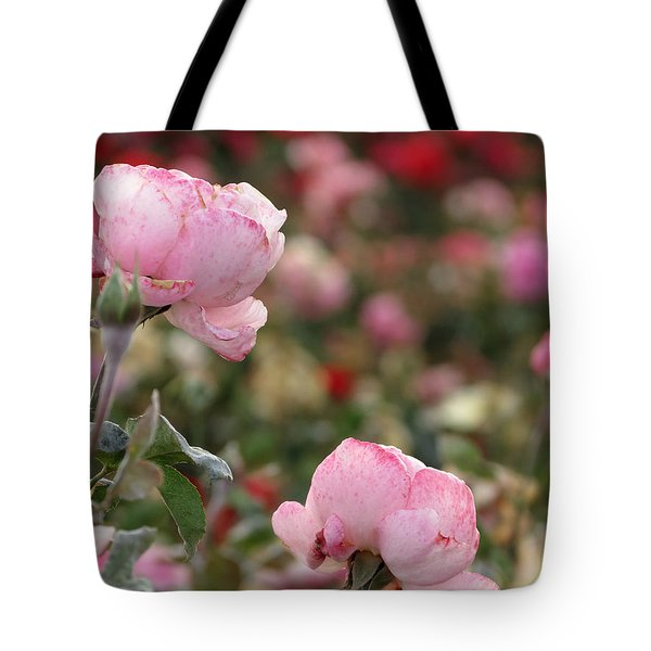Tote Bag featuring the photograph Pink Roses by Laurel Powell