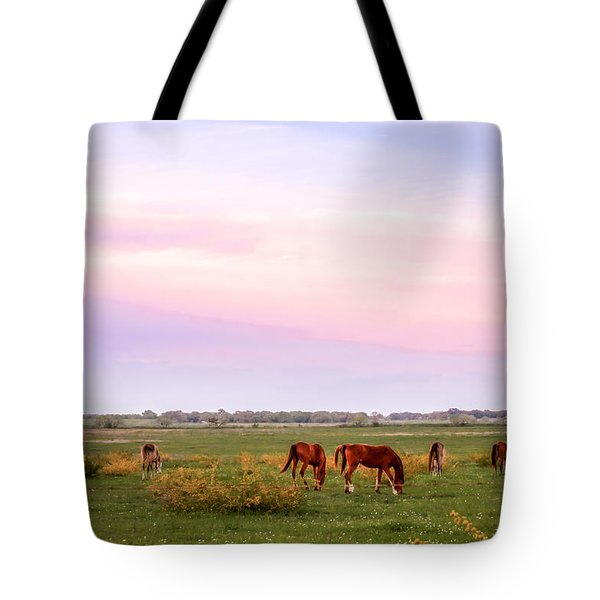 Tote Bag featuring the photograph Pink Sky Night by Melinda Ledsome
