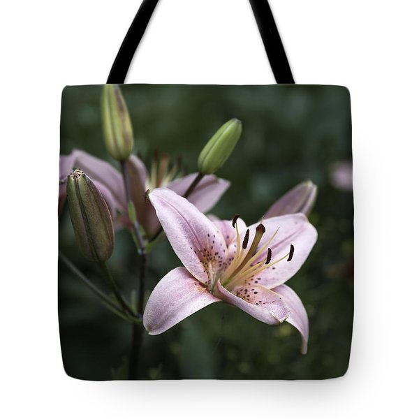 Pink Tiger Lily Tote Bag by Jason Moynihan