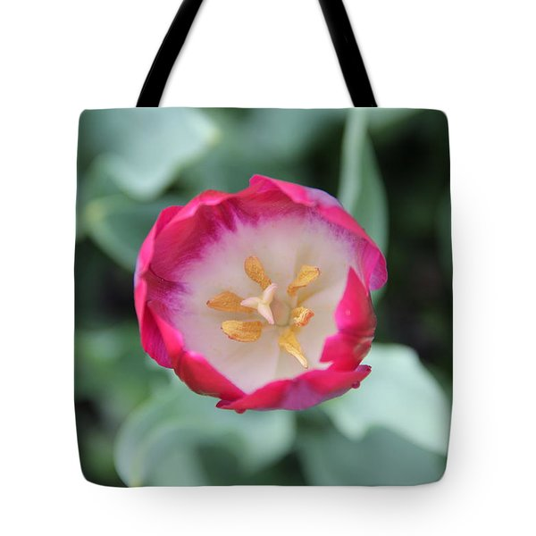 Pink Tulip Top View Tote Bag