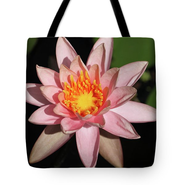 Pink Water Lily 2016 Tote Bag by Suzanne Gaff