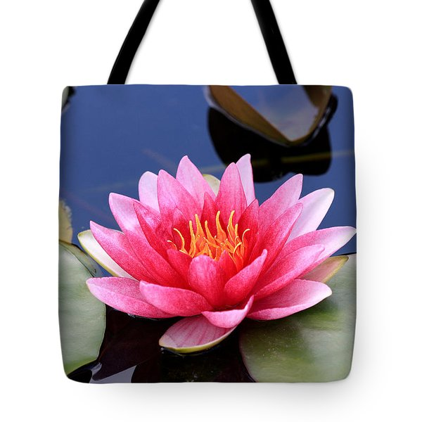 Pink Water Lily In A Pond Tote Bag by Pierre Leclerc Photography