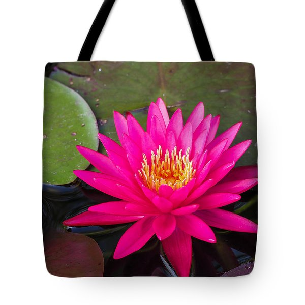 Pink Waterlily Garden Tote Bag
